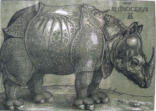 Rhinocéros de Dürer